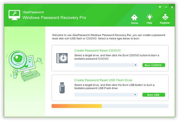 windows password recovery pro